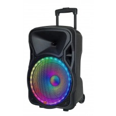 N-Gear FLASH1205 12'' Portable Speaker LED/USB/Mic 300W